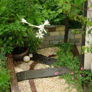 「庭」という視野から、「花壇」という視野への変化。ガーデナーとしての視野... ガーデナーの視野